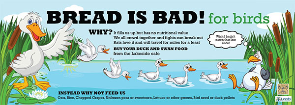 Bread is BAD for water birds - read all about it....
